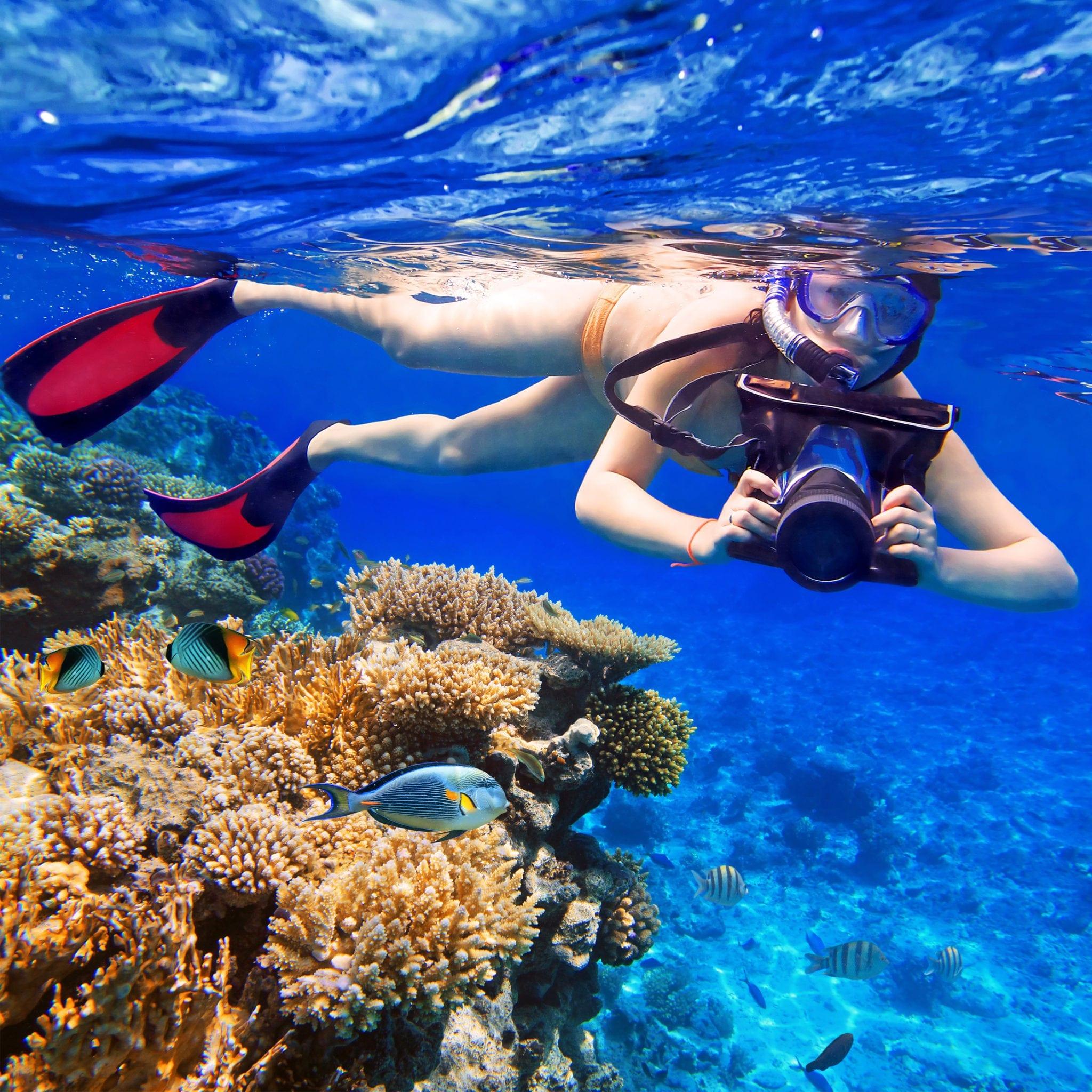 snorkeling in Ocho Rios Jamaica