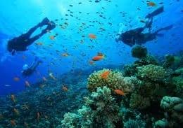 Scuba Diving Ocho Rios Jamaica