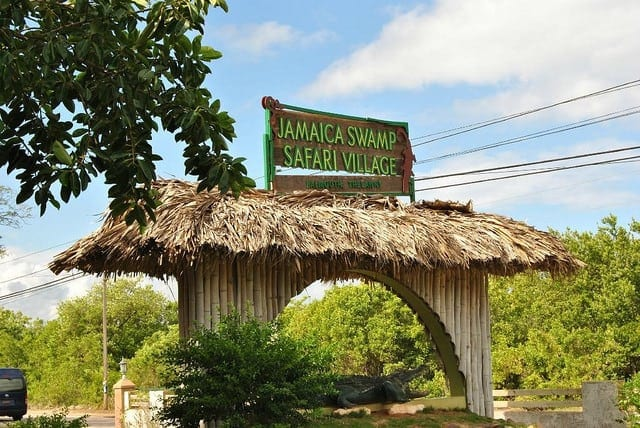 Jamaica villa swamp safari