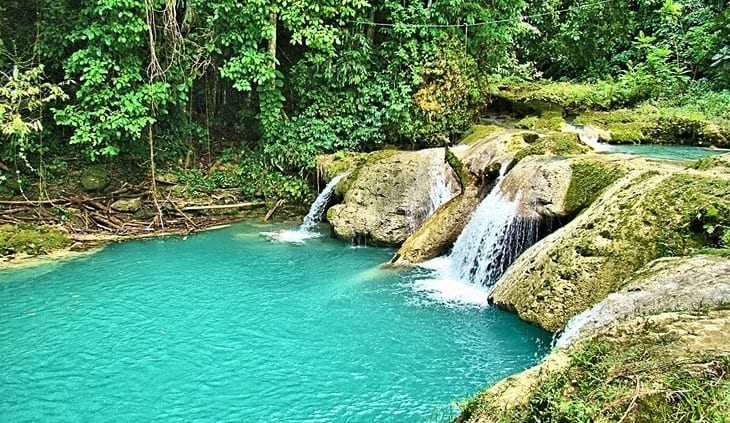 Jamaica waterfalls & exotic wildlife are the draw at this tropical eco-attraction.